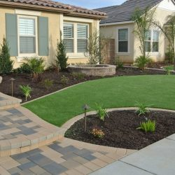 Water restrictions keeping your lawn from looking great? – Check this out!