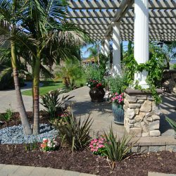 How to save valuable resources with your landscaping